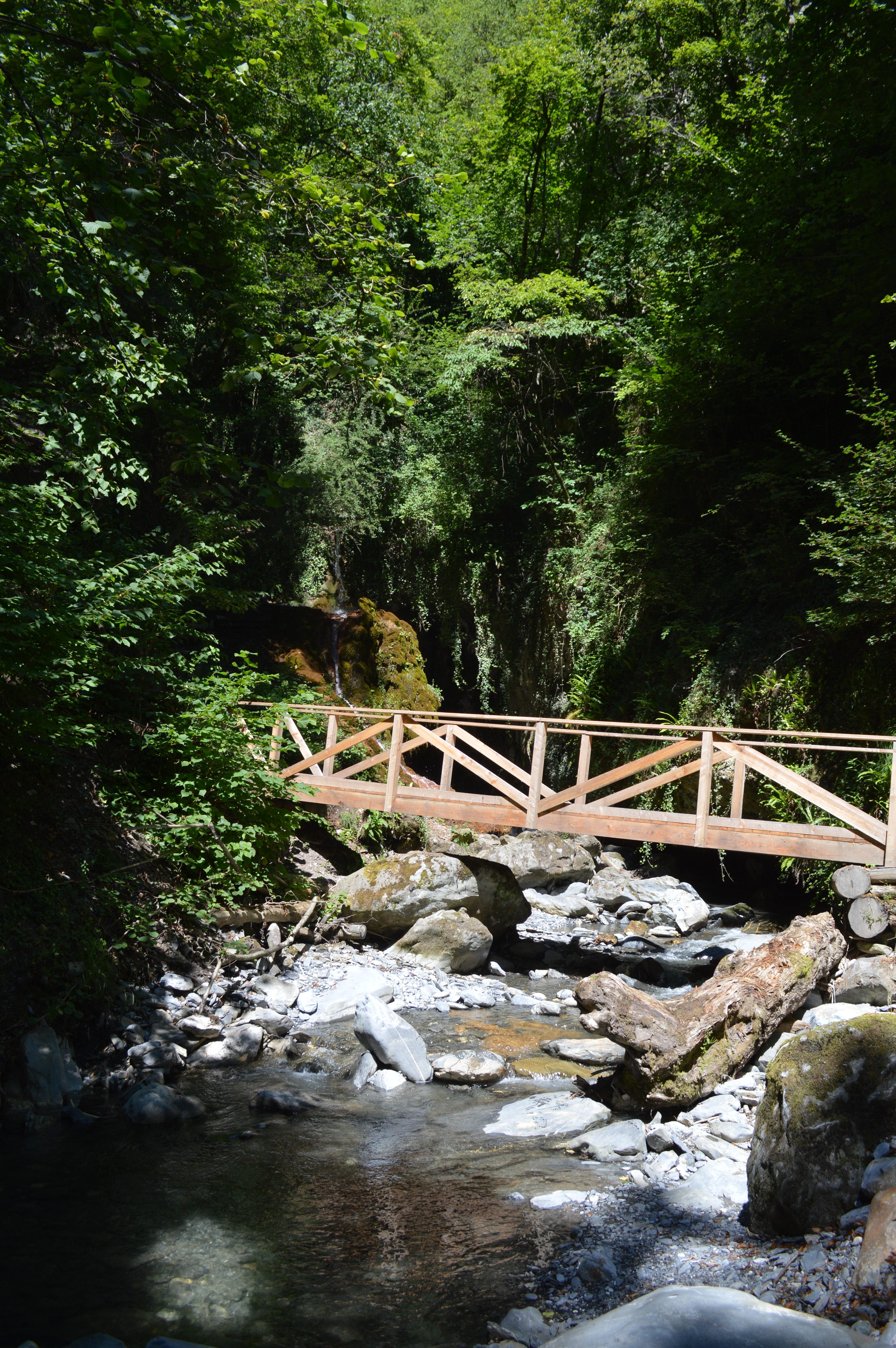 Pont sur la Salentze